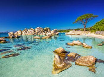 Voyage Corse